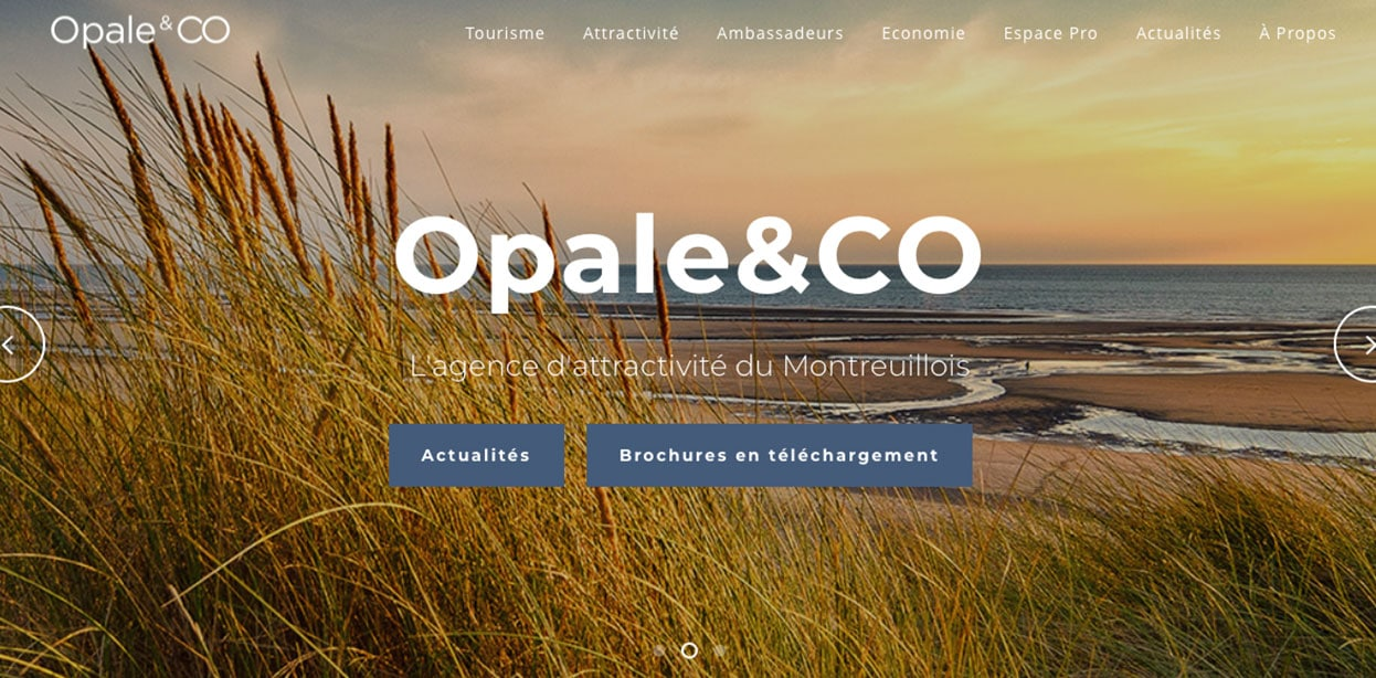 Opale and co choisit Welogin